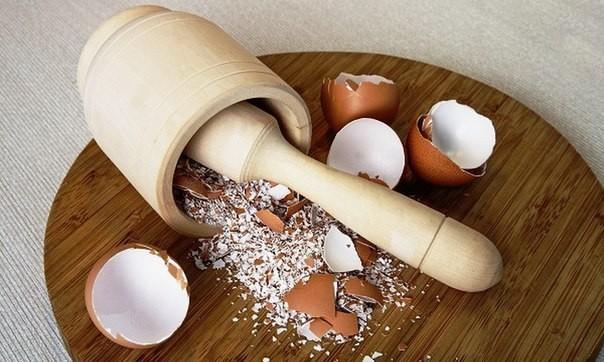 Порошок из яичной скорлупы как эффективное средство борьбы с болезнью
